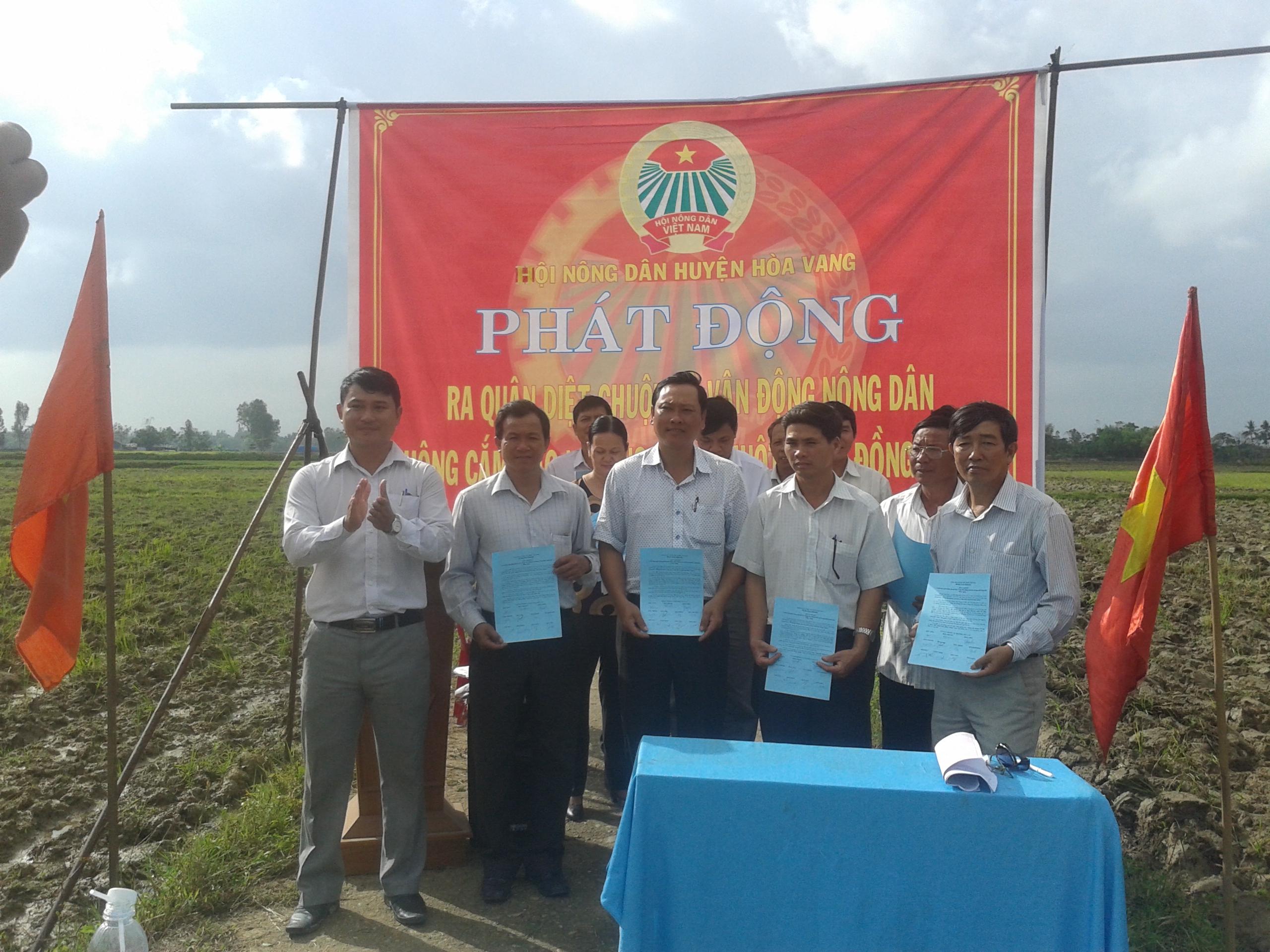 Đà Nẵng: Nông dân Hoà Vang ra quân diệt chuột bảo vệ lúa