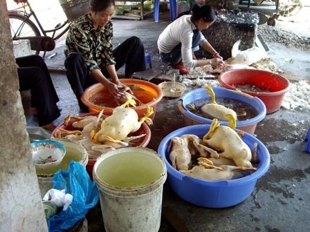 Xử phạt vi phạm sử dụng hóa chất trong sản xuất, chế biến thực phẩm