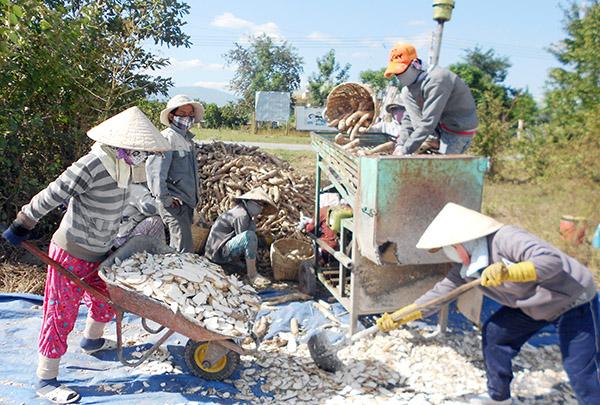 Bình Thuận: Đa dạng các dịch vụ hỗ trợ nông dân