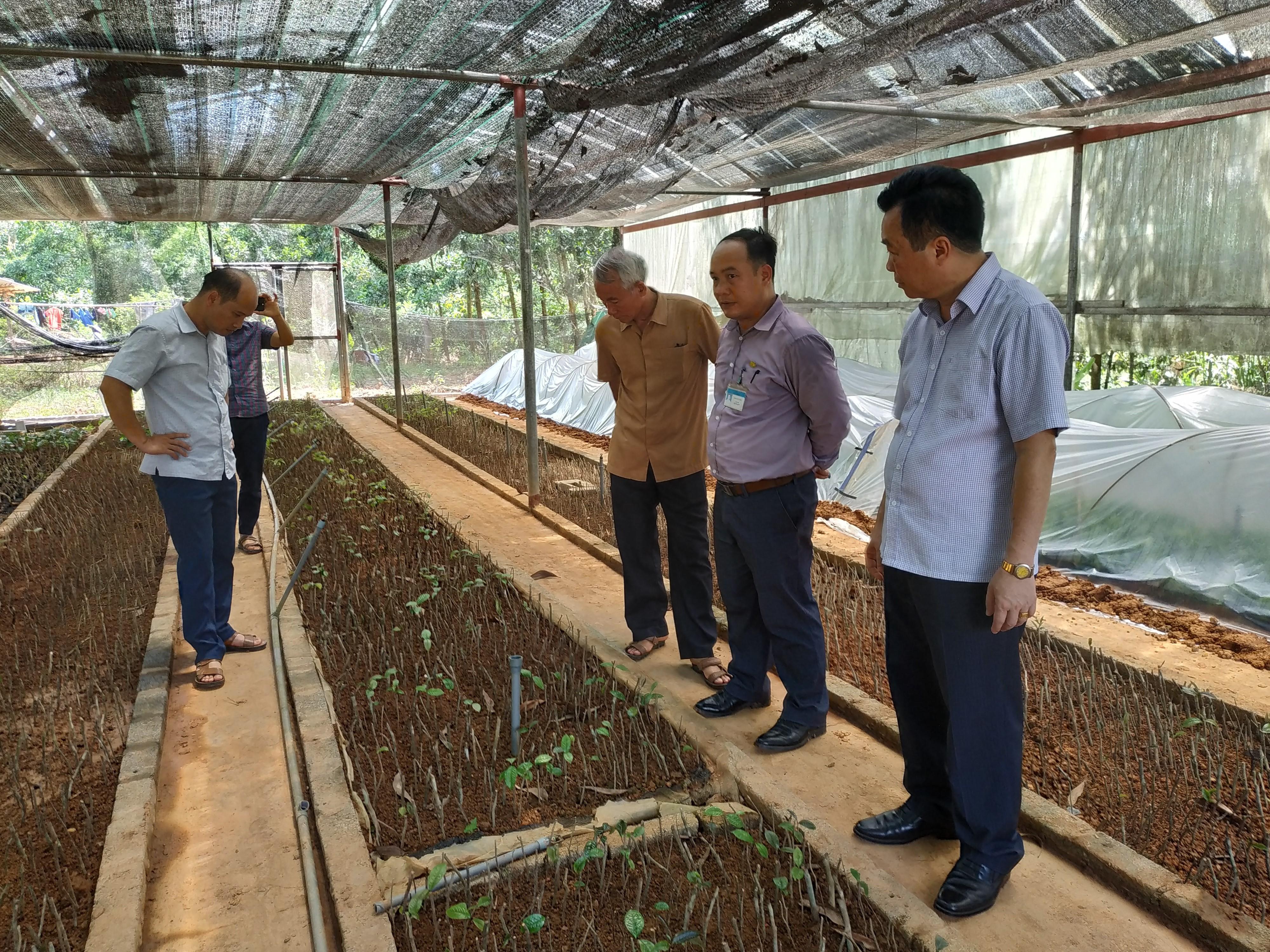 Quỹ HTND giúp nông dân phát triển kinh tế hiệu quả