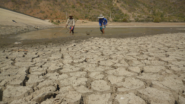 Ninh Thuan met the serious drought