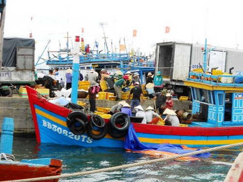 Cat Khanh Commune (Binh Dinh Province): To develop united fishing boat team for seafood exploitation
