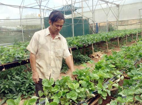 A farmer producing with an iPhone 7 Plus: Im a 4.0 farmer