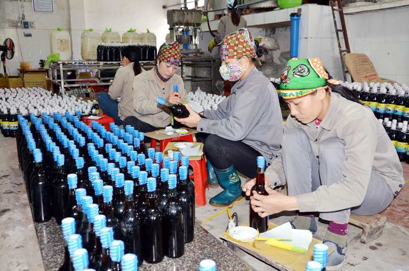 Farmers in Quang Ninh apply QR Codes to OCOP (One Commune One Product) products