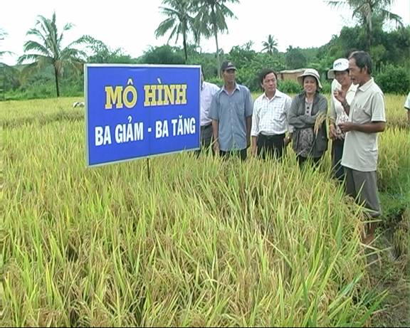 An Giang: Members, farmers actively participate in emulation movements