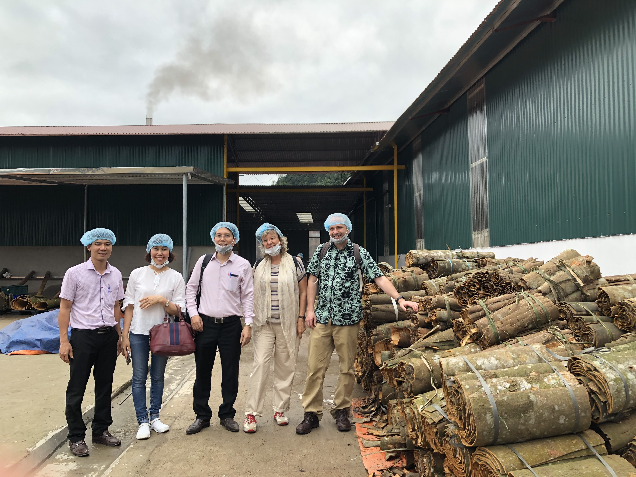 More resilient livelihoods and landscapes for the forest producers on organic cinnamon production in Dao Thinh commune, Tran Yen District, Yen bai province