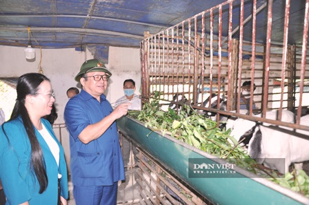 VNFU Chairman Thao Xuan Sung visited an imported Boer goat farm
