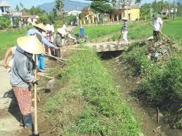 Đà Nẵng: Thành lập 38 Câu lạc bộ Nông dân tham gia bảo vệ môi trường