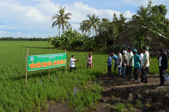 Kiên Giang: Hơn 15 ngàn hộ nông dân tham gia dự án VnSAT