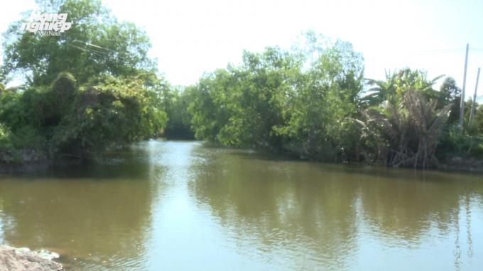 Ngăn sông trữ ngọt cho đồng bằng sông Cửu Long