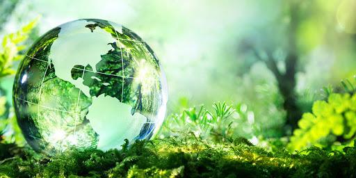 Đề xuất quy định tổ chức, hoạt động Quỹ bảo vệ môi trường địa phương