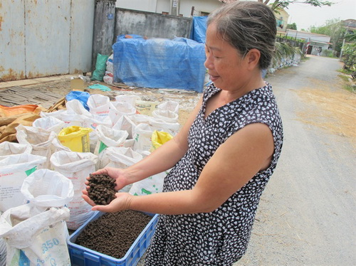 Củ Chi: Thu nhập tiền tỷ mỗi năm từ nuôi trùn quế