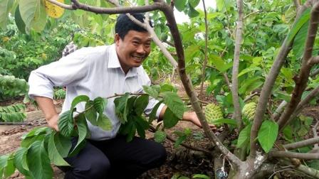 Na Hoàng Hậu đậu quả ngọt ở Đông Trường Sơn