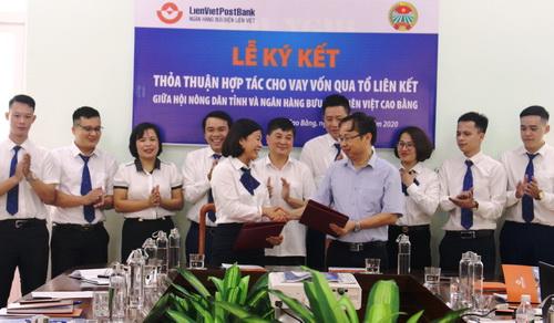 Hội ND Cao Bằng: Ký kết thỏa thuận hợp tác với ngân hàng Thương mại cổ phần Bưu điện Liên Việt (LienVietPostBank)