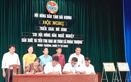 Hải Dương: Ra mắt mô hình điểm Chi Hội nông dân nghề nghiệp sản xuất và tiêu thụ rau an toàn xã Đoàn Thượng
