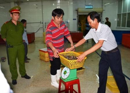 Vụ tôm tạp chất tại Cty Quốc Ái: Yêu cầu ký cam kết, nếu tái phạm xử lý nghiêm
