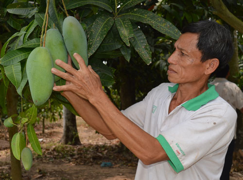Nông nghiệp miền Tây: Sống chung với biến đổi khí hậu