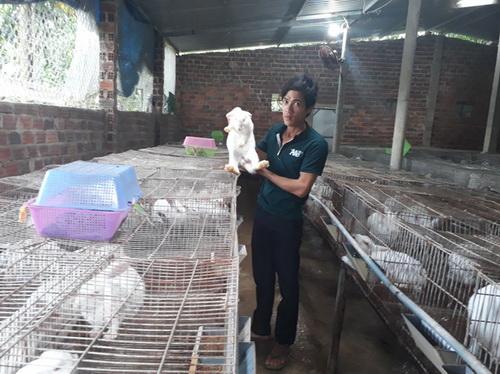 Hiệu quả bất ngờ từ mô hình chăn nuôi tổng hợp ở xứ Quảng