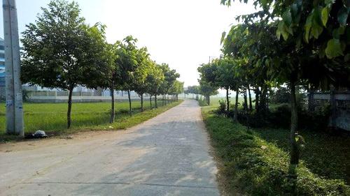 Lào Cai: Đồng bộ nhiều giải pháp nhằm bảo vệ môi trường nông thôn