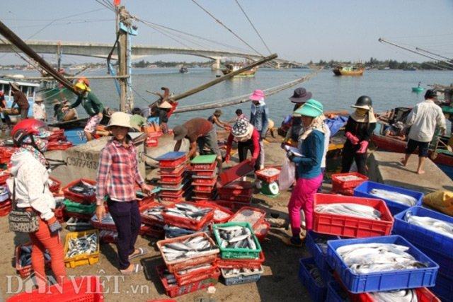 Quảng Trị: 3/7 mẫu hải sản có hàm lượng asen vượt mức cho phép