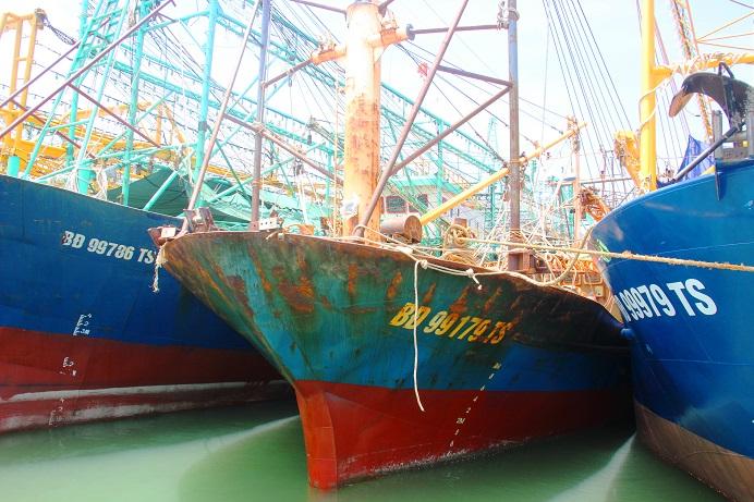 Vụ tàu 67 nằm bờ: DN phải đền bù mọi thiệt hại