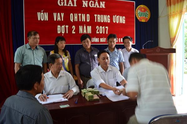 Điện Biên: Giải ngân 850 triệu đồng cho hội viên nuôi trâu sinh sản