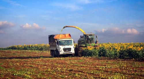 Đất và vốn cản đường doanh nghiệp làm nông