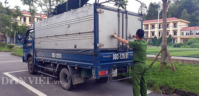Vụ 35 con lợn dịch tả lọt vào Lạng Sơn: Sẽ kỷ luật cán bộ thú y