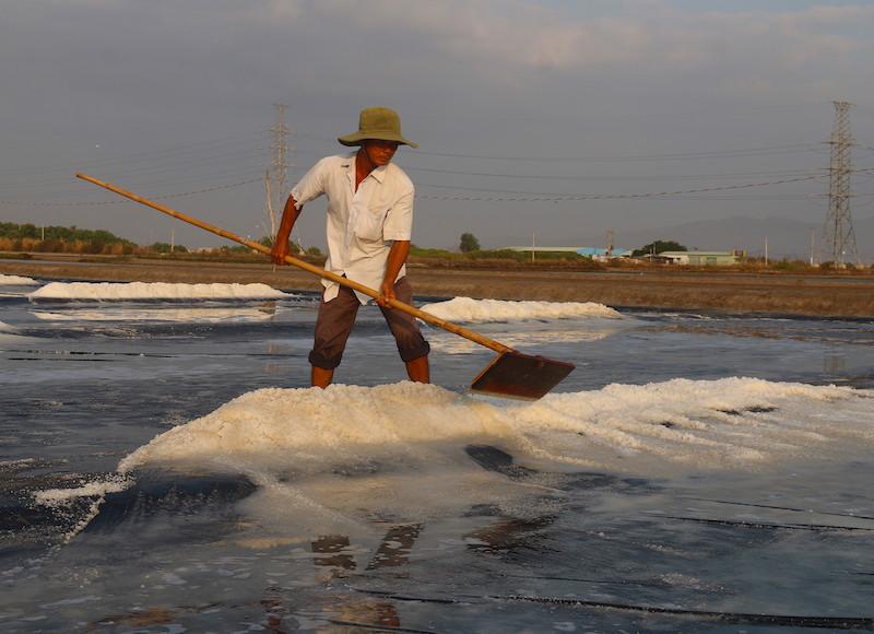 Nắng lớn, diêm dân lại ra biển cào hạt vàng, lãi 350.000 đồng/tấn
