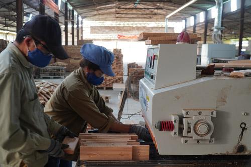 Dịch Covid-19 ở Mỹ, EU: Hơn 5.000 doanh nghiệp ngành gỗ điêu đứng