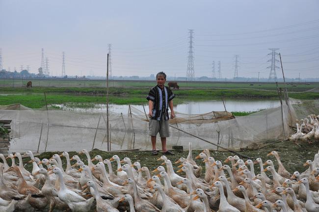 Lai Châu: Nuôi lung tung cả ngàn con gà, con vịt, con ngan, một nông dân vùng cao có của ăn của để