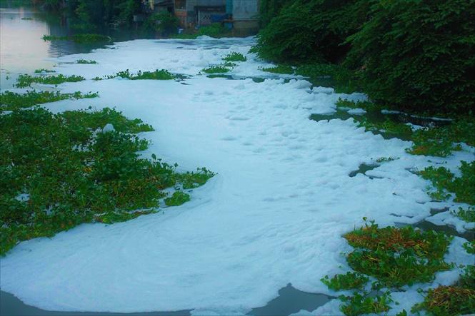 Phạt thật nặng doanh nghiệp hạ độc nguồn nước thủy lợi