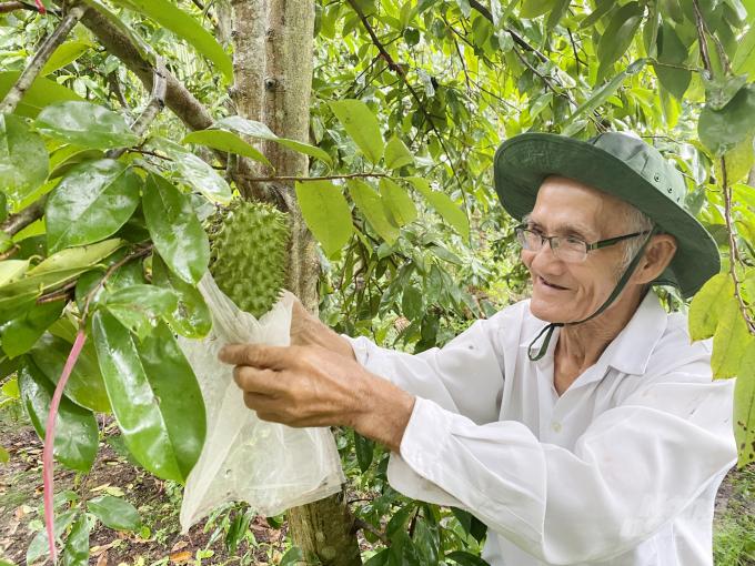 Chăm sóc vườn cây trong điều kiện thời tiết bất lợi