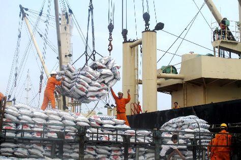 Dự kiến năm 2021 nhập khẩu 110.000 tấn muối