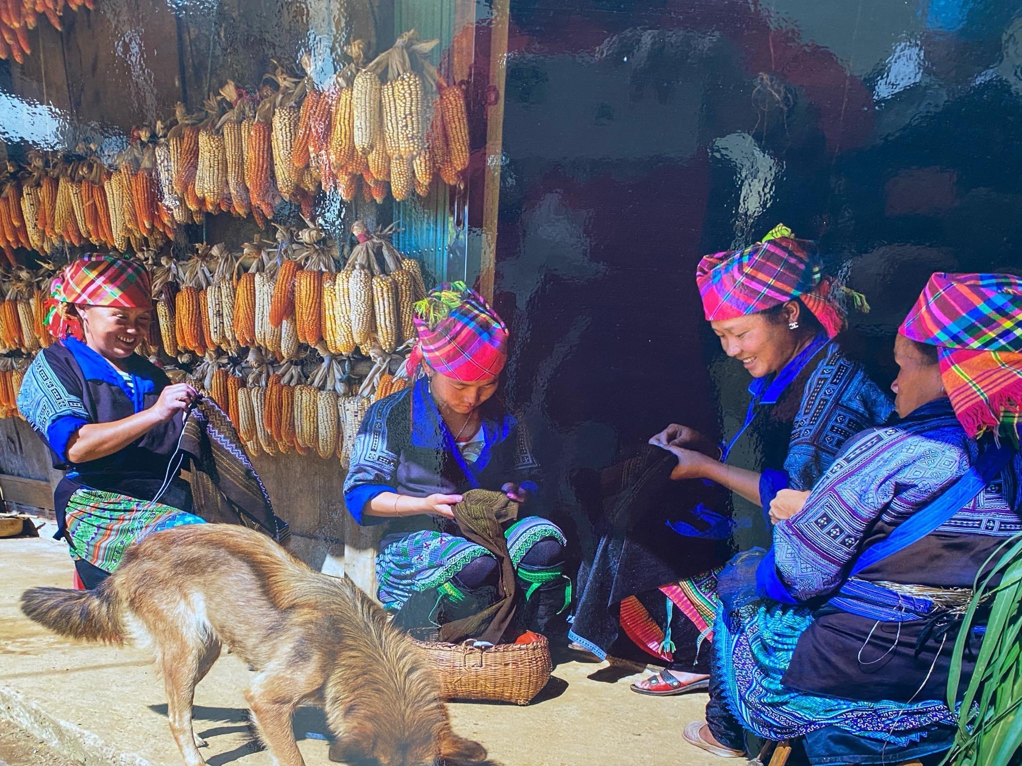 Yên Bái: Kết hợp cho vay vốn với xây dựng chuỗi giá trị nông sản